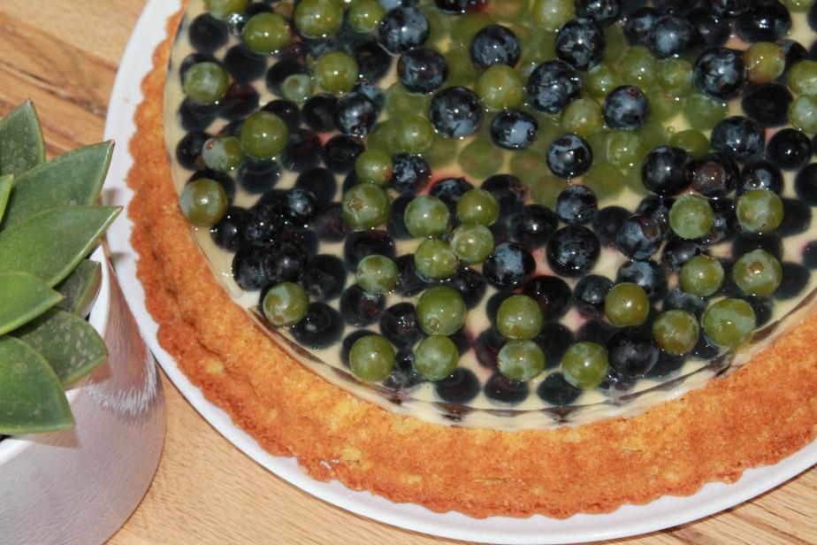 Trauben Pudding Kuchen